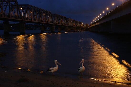 Bridge over moony waters by David Petranker