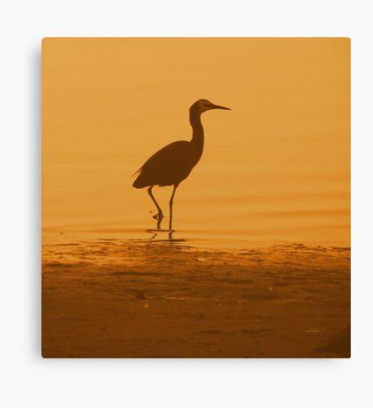 Lonely Crane Canvas Print