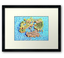 New Super Paper Mario World 3D Deluxe U Framed Print