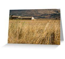 Puglia, Italy Greeting Card