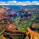 Waimea Canyon by Nickolay Stanev