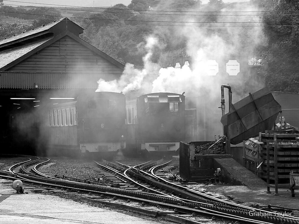 Mount Snowdon Railway Yard by Graham Taylor