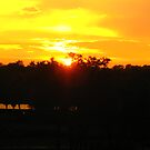 Disney Animal Kingdom Lodge - Balcony Sunset by Richard Durrant