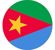 Roundel of the Eritrean Air Force  Photographic Print