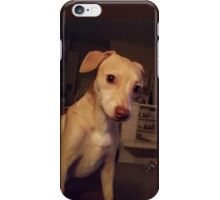 "My Gorgeous Puppy, ""Honey "" ♡ iPhone Case/Skin"