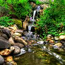 Garden stream by PaulHealey