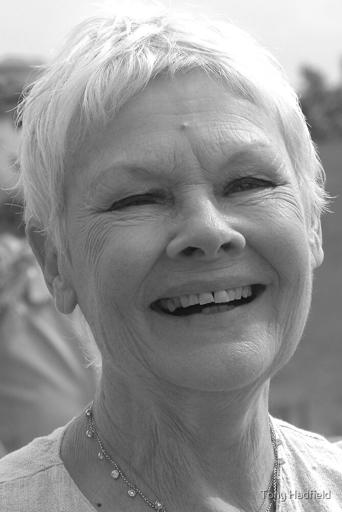 Dame Judi Dench number 2 by Tony Hadfield