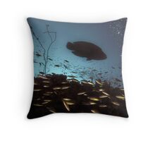 Maori Wrasse Silhouette  Throw Pillow