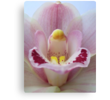Orchid New Life Canvas Print