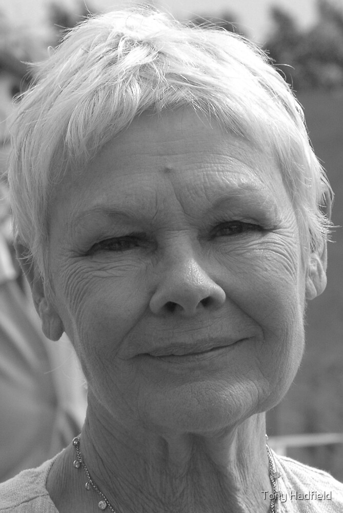 Dame Judi Dench number 4 by Tony Hadfield