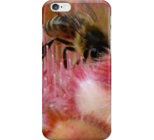 Protea and the Busy Bee iPhone Case/Skin