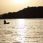 indian bay by james veira