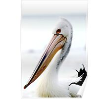 What a Beak! Poster