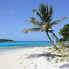 Tobago kays by james veira