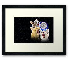 Exclusive Three Cat Moon Design! Framed Print