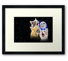 Exclusive Three Cat Moon Design! Framed Print