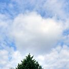 Valentine's Heart Cloud by Paul Gitto
