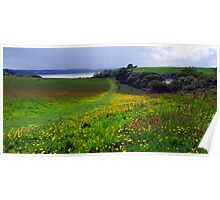 Buttercup Fields Poster