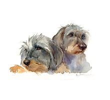 Millie and Daisy Photographic Print
