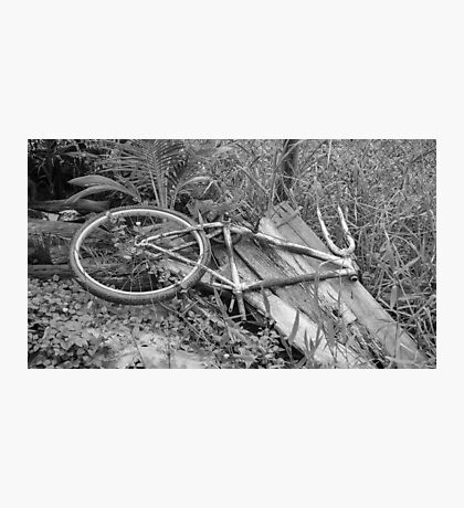 Abandoned Bike Photographic Print