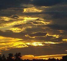 Heaven by TammyC