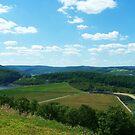 The Tioga Hammond Dam by RLHall