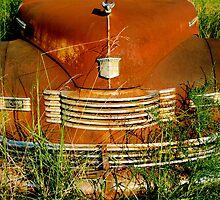 Rusty Treasure by Amanda Jordan
