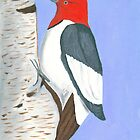 Red headed woodpecker by Eddy1948