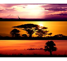 From Africa, With Love Photographic Print