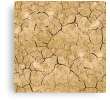 Clay soil with cracks without water. soil erosion Canvas Print