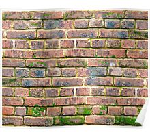 weathered brick wall with various shades of brick.  Poster