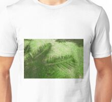 shadow of the palm leaves on the lawn Unisex T-Shirt