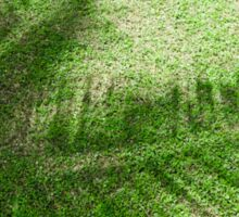 shadow of the palm leaves on the lawn Sticker
