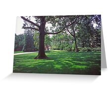 Dumbarton Oaks, Washington DC, in the Grounds Greeting Card