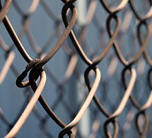 Chain Link by studyinlight