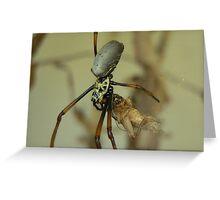 Arachnid Lunch Greeting Card