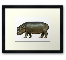 figure of a young hippo. Isolation on white background Framed Print