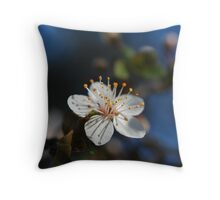 Sakura - 桜 Throw Pillow