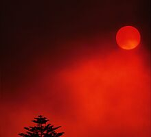 Blood Red Sky by John Brumfield