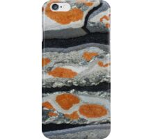 Dry stone wall iPhone Case/Skin