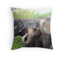 Happy to see you! Throw Pillow