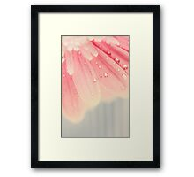 baby pink Framed Print