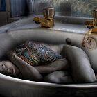 The sink bath by craig sparks