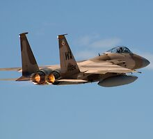 F-15 Aggressor by jdmosher