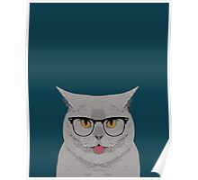 Kai - British shorthair cat gifts for cat lovers, cat lady gifts Cat people gifts, Hipster Glasses Poster