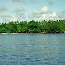 Solomon Islands Scenery by Kristin Hamm