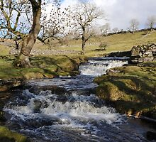 Streams in the Yorkshire Dales by John (Mike)  Dobson