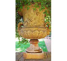 mid-1800 vase/planter Photographic Print