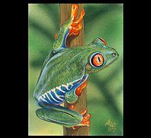 Frog #3 by artbyakiko