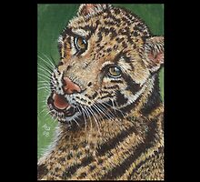 Clouded Leopard #1 by artbyakiko